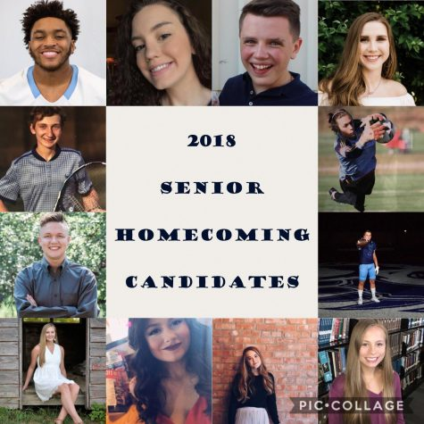 Get to know the 2018 senior Homecoming candidates
